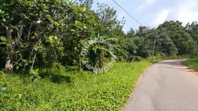 Jalan Kg Tengah Dalam ~Kluang ~ Agricultural Land