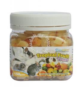 Tropical Fruit Treats for Sugar Gliders