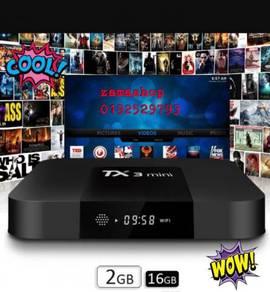 COD BOX ZAM Tx3 mini n max 2g/16g android wifi tv