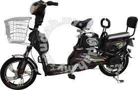 48v electric bicycle 2 seats