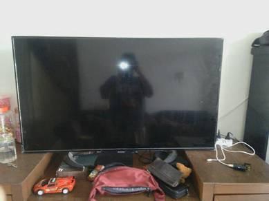 Tv LCD singer 50inci