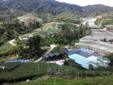 Can Acceptable Small Parcel Of Land For Sale At Cameron Highland Land