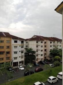 Bilik Sewa Lelaki JB || CIQ || Singapore || 5 minit || Laluan Bas