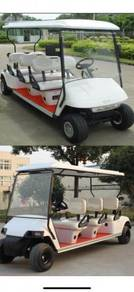 Golf cart Electric sightseeing new