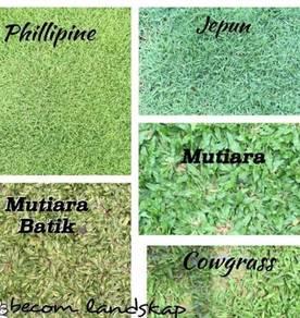 Rumput Landskap Hiasan Terbaik