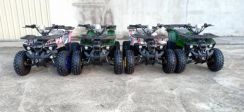 Motor ATV130cc new T5