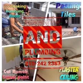 Roofleaking,Renovation & Plumbing servis