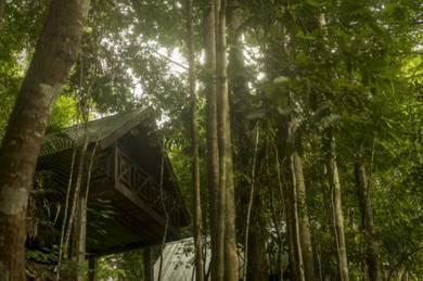 Belum Adventure Camp (Perak)