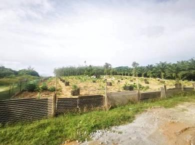 Tanah utk di Jual Durian Tunggal