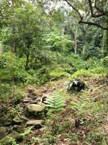 Tanah Dusun Durian di Bandar Baharu
