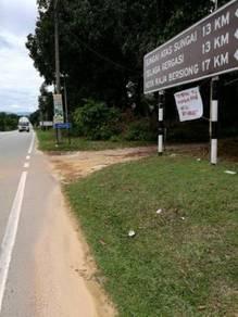 Tanah Kelapa Sawit Murah di Selama Perak