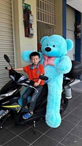Teddy bear besar (big teddy bear)