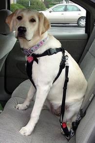 Dog & cat pet adjustable car safety seat belt