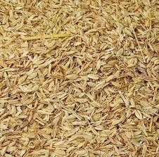 Sekam kuning atau kulit padi AA
