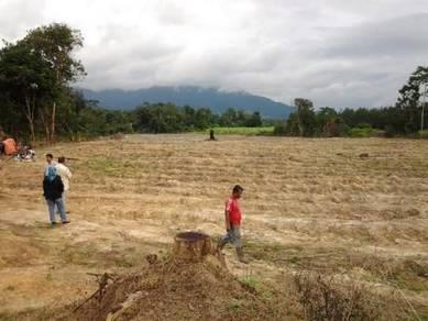 Tanah untuk dijual di jelebu negeri sembilan