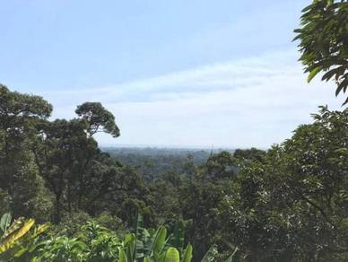 Puncak Mutiara 8 acres Land | FOR SALE