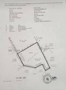 Tanah Freehold Open 9.82 Ekar di Mukim Sri Menanti, Kuala Pilah, N9