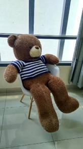 Huge Teddy's Bears for Sale Very Cute and Cuddly