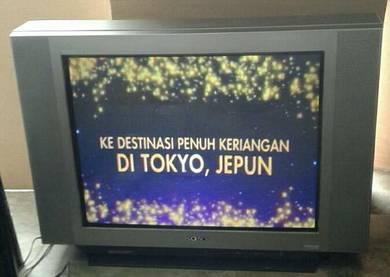 Sony 29 Tv (flat skrin)