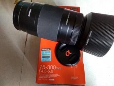 Sony 75-300 zoom lens.