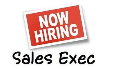 Sales Executive Used Car Dealer