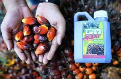 Baja Sawit Organik