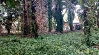Tanah kg gajah