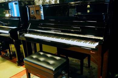Schönbrunn XO1 Piano (NEW / 10 Yrs Warranty)