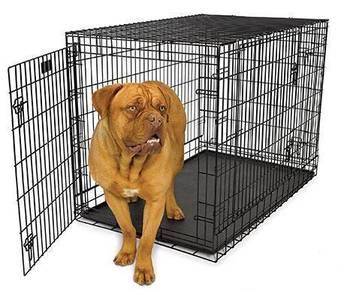 Big 4Feet Dog Cage