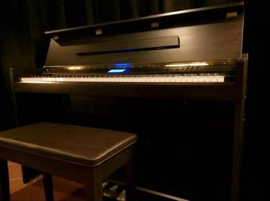 HAILUN DUQiii Digital Piano - SatinWalnut
