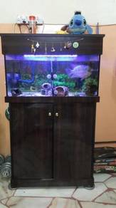 2½ feet aquarium FULL SET WIT LIGHT