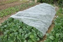 Nonwoven Fabric Planting Cover / Pond liner