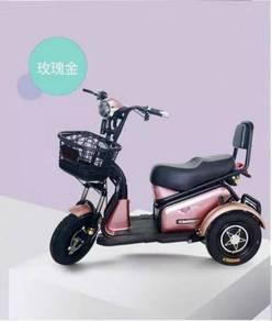 Electric Bicycle new (Sabah)