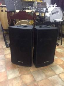 Dynamax TSCM12 Speaker (12