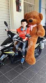 Teddy bear saiz XXL 1.8meter