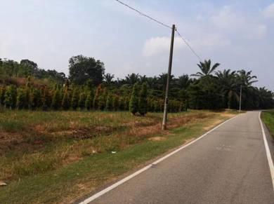 Seri medan road side land