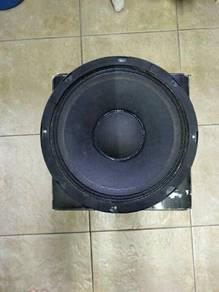 Speaker 12ins