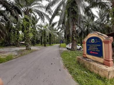Tanah Sawit Berada di Dalam Kawasan Kampung