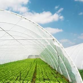 Jaring Greenhouse Rumah Pelindung Hujan (RPH)