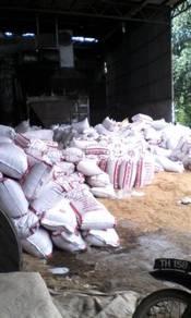 Sekam padi kuning untuk lapik ayam ternakan