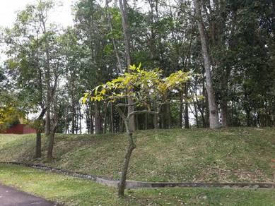 College Height Garden REsort Pajam Nilai Mantin