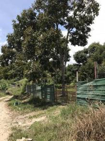 4acre, Musang King, durian land, cheroh, Raub, freehold, pahang