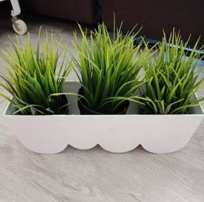 Grasses with pot
