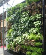 Vertical Greenwall With Pot System
