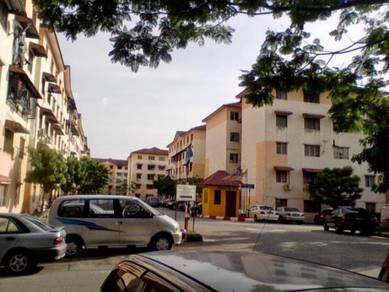 Sdg Mencari Apt Idaman, Damansara Damai, PJU