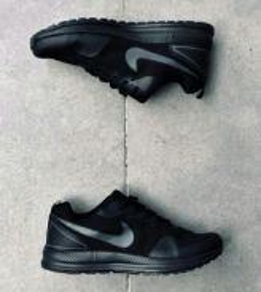 Nike Shinsen