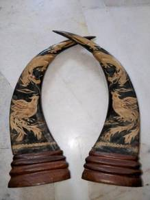 Authentic Buffalo Horns / Tanduk Kerbau Asli