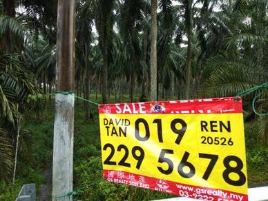 Klang ,meru,kapar kampung bukit cerakah off jalan utama mukim kapar