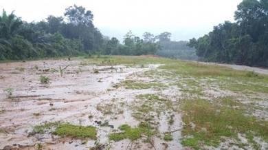4 lot banglo di Bukit Che Amin, Tok Randok Ajil