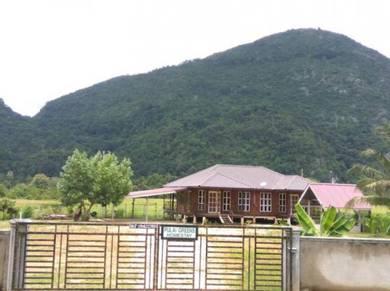 Pulai Greens Homestay, Baling